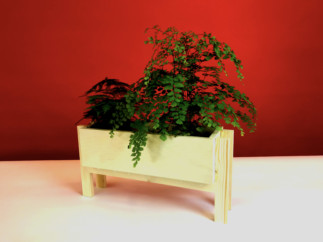 Plywood Plater_bright